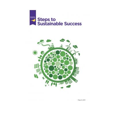 steps to sustainable success